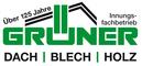Grüner Sponsor Logo