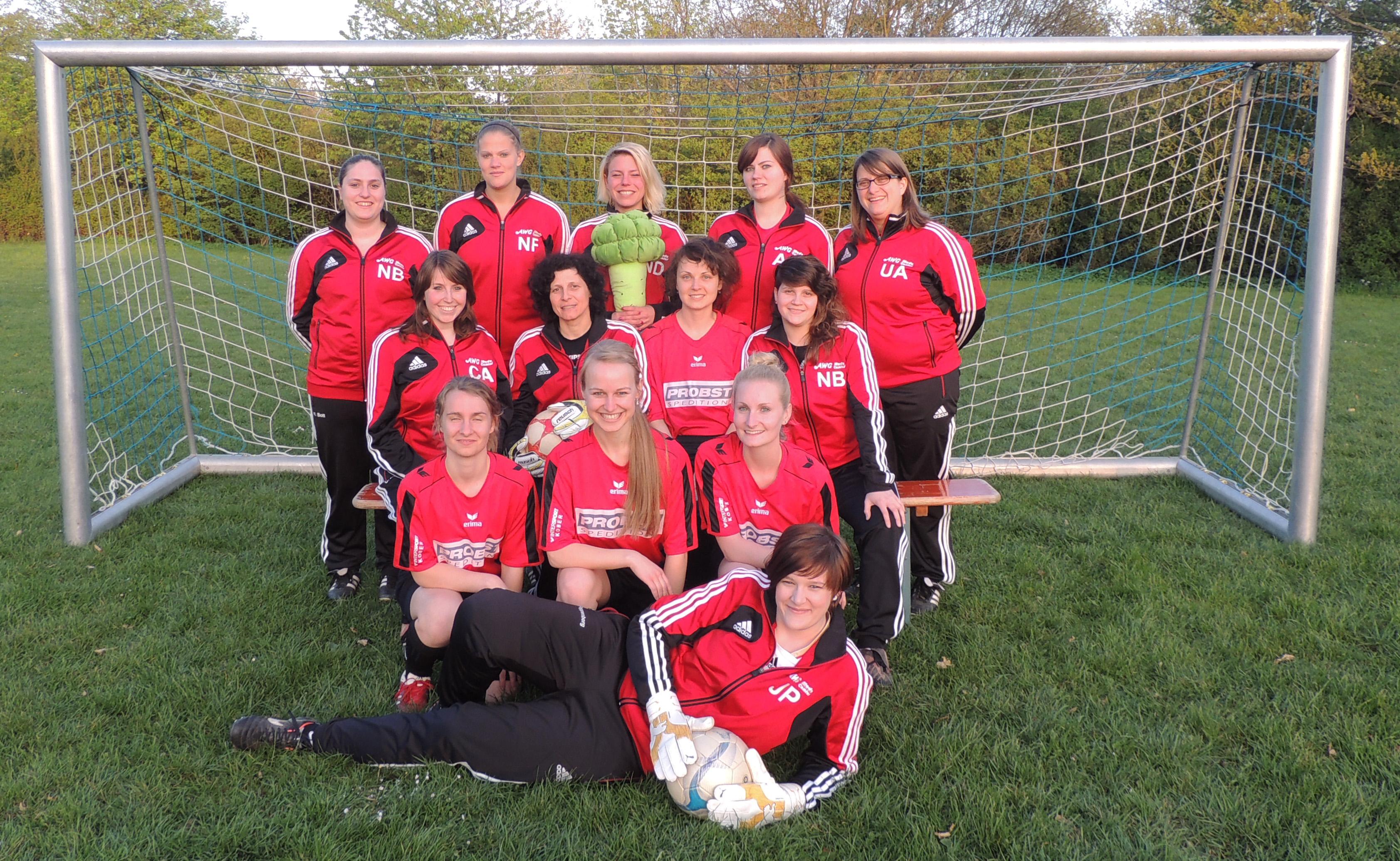Mannschaftsfoto 2013-14 Damen