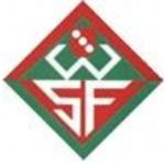 SGM Wernauer SF:Inter Nürtingen Logo Wappen